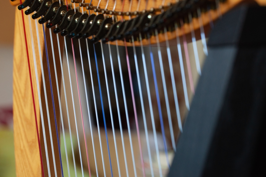 taking the harp to the hospice